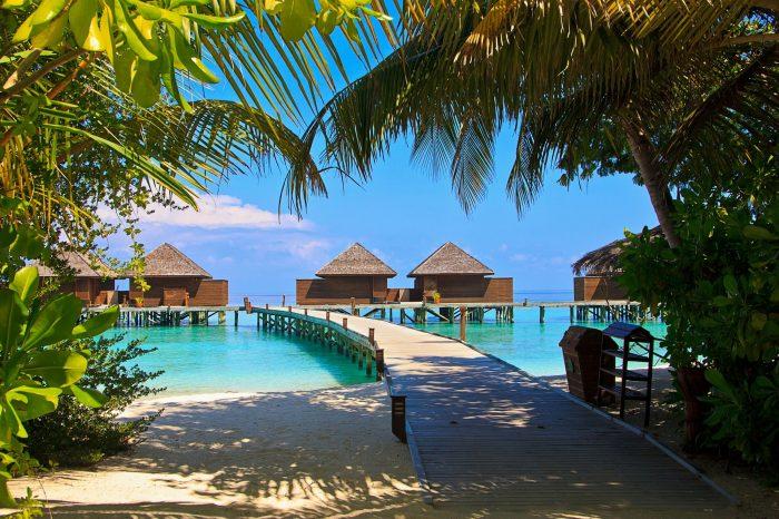 Maldivi <h3 class='podnaslov' >Svakodnevni polasci</h3>