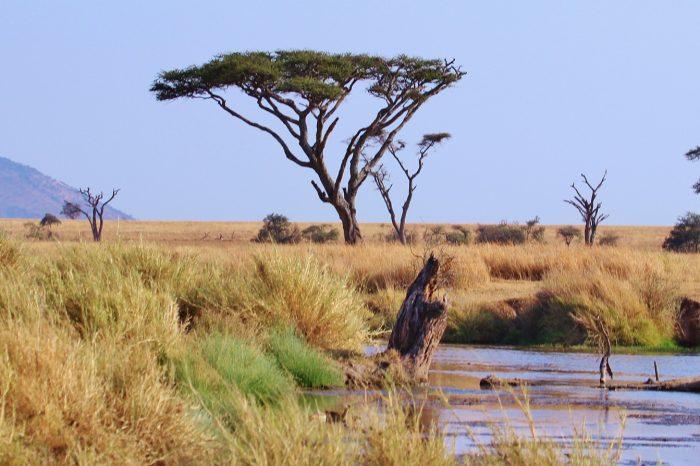Tanzanija i Zanzibar